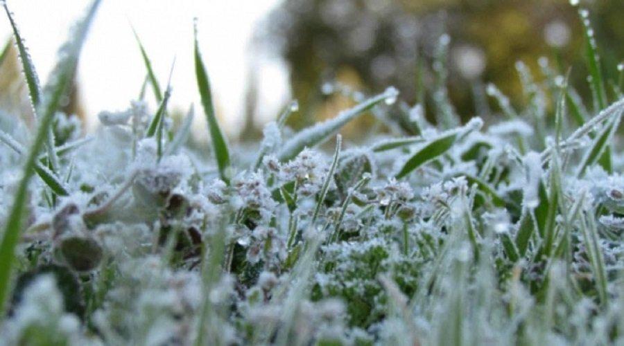 نشرة خاصة.. جو بارد وانخفاض كبير في درجة الحرارة بهذه المناطق