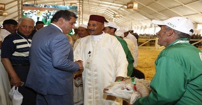أخنوش يعقد اجتماعا مع مهنيي اللحوم الحمراء لتدارس الاستعدادات لعيد الأضحى