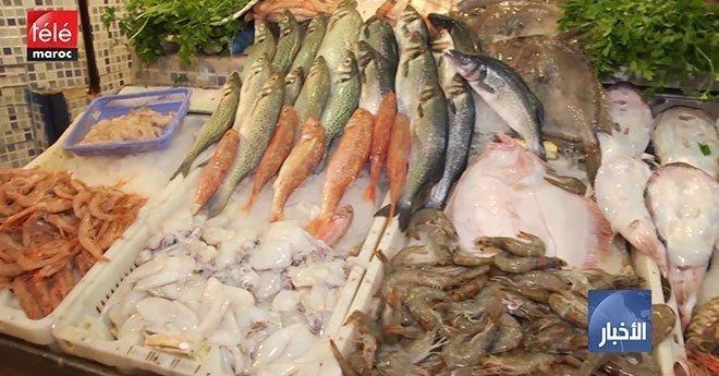 فيديو..ارتفاع أسعار السمك يثير استياء المواطنين، و دعوات لمقاطعته تشعل مواقع التواصل الاجتماعي