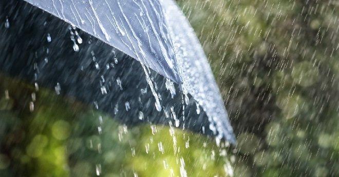 جهة مراكش آسفي.. التساقطات المطرية الأخيرة تنعش آمال الفلاحين