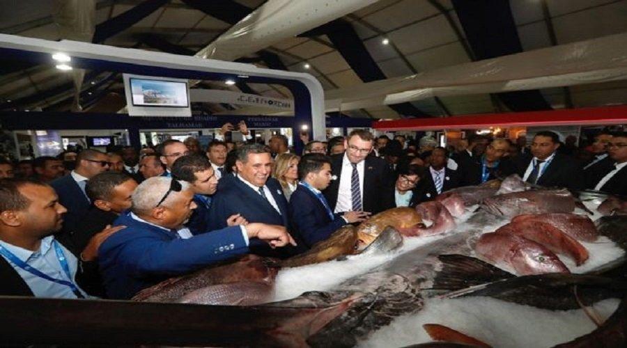 """هكذا رفع مخطط """"أليوتيس"""" إنتاج وصادرات الصيد البحري"""