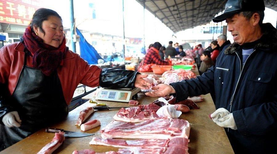 مدينة صينية تمنع أكل لحوم القطط والكلاب بسبب كورونا