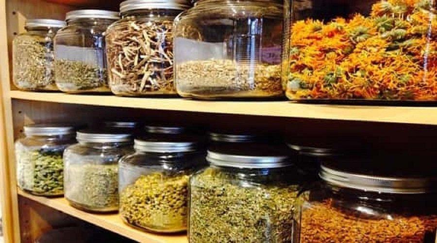 منظمة الصحة توافق على اختبار أدوية عشبية إفريقية في علاج كورونا