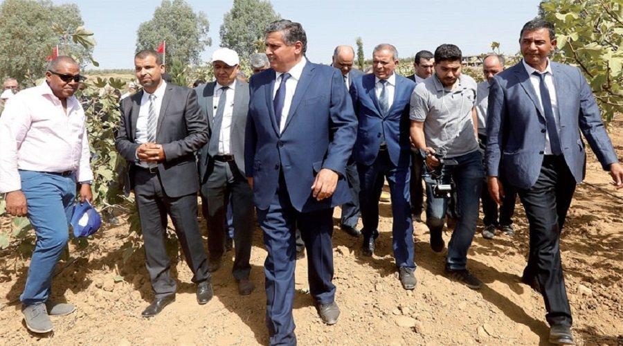 """هكذا وضح مخطط """"المغرب الأخضر"""" القطاع الفلاحي في صلب الاقتصاد الوطني"""