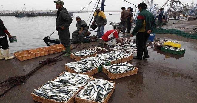 المفوضية الأوربية تتشبث باتفاق الصيد البحري مع المغرب