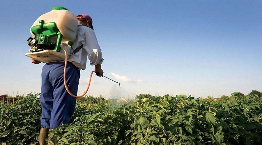 هذه حقيقة دخول مبيدات زراعية غير مرخصة إلى المغرب