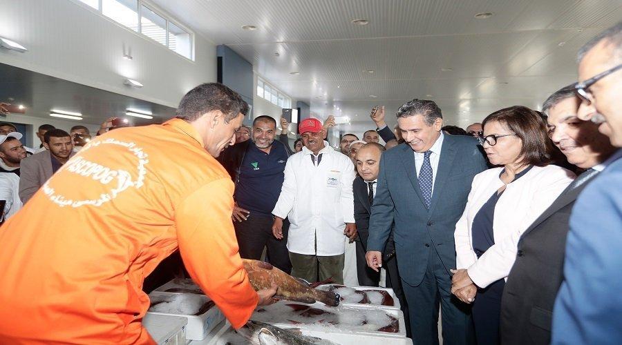 أخنوش يترأس افتتاح سوق الجملة الجديد للسمك في إنزكان