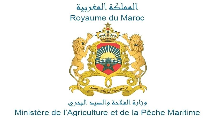 حصيلة وأثار مخطط المغرب الأخضر خلال عقد من الزمن