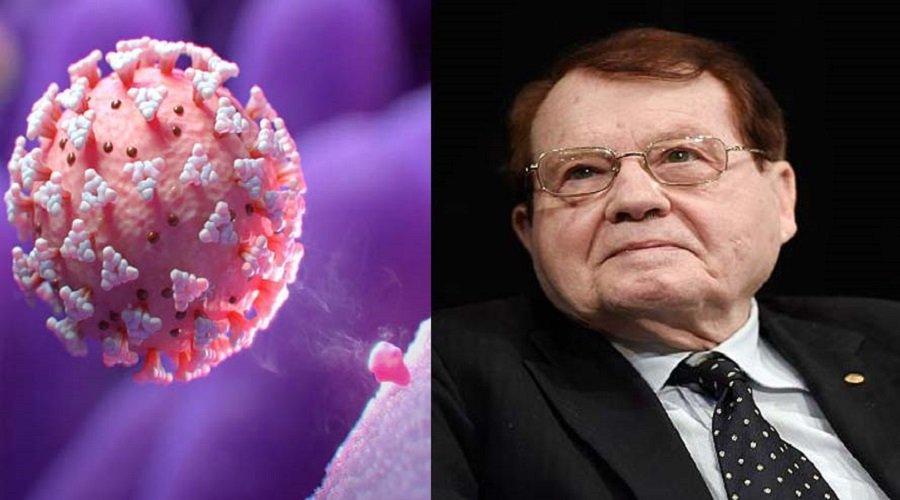 بروفيسور فرنسي يكشف تواجد مركبات لفيروس السيدا في تكوين كورونا المستجد