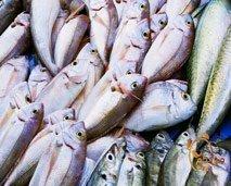 فقرة مستهلك: فوائد السمك وبعض طرق طهيه و تخزينه