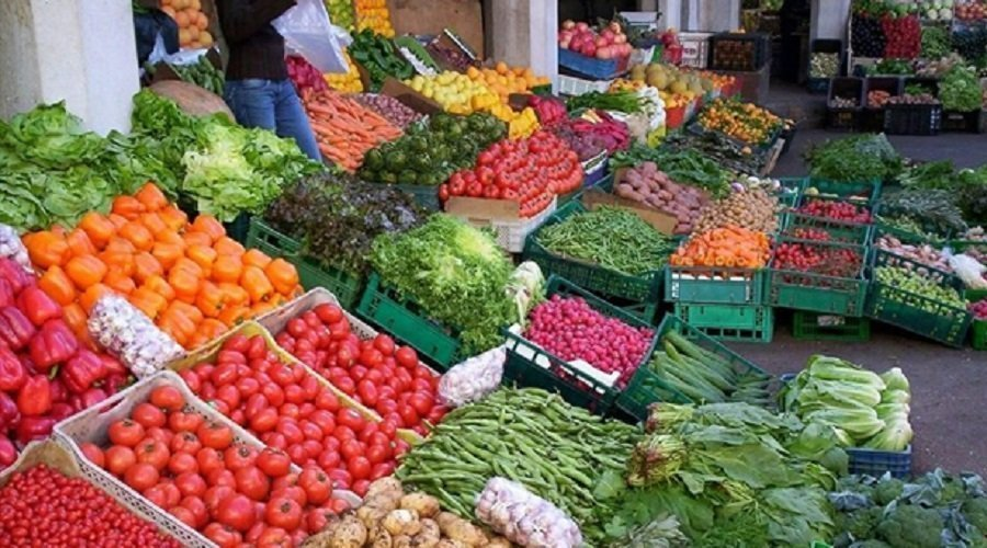 توقع إنتاج 235 ألف طن من الخضروات في إطار برنامج الزراعات الربيعية