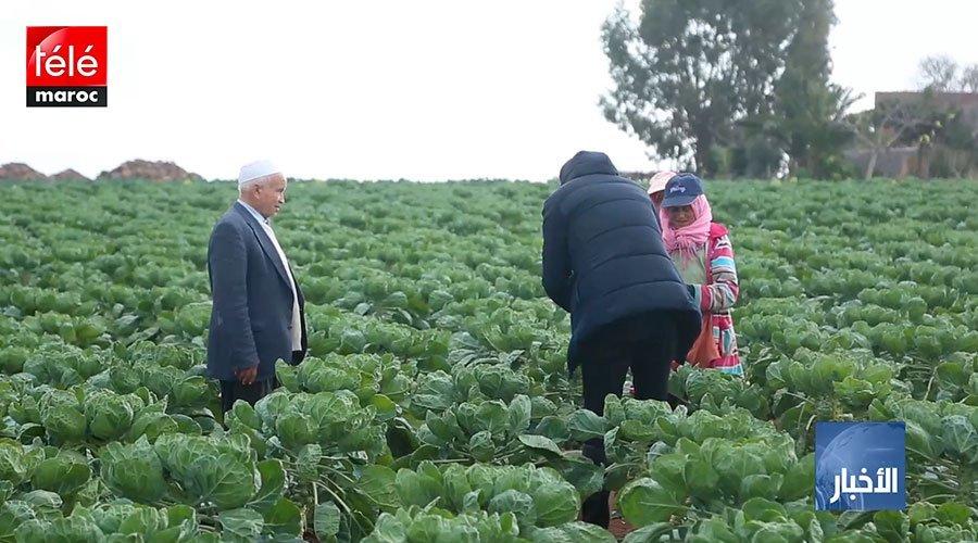 أزيد من 22 ألف مغربي غادروا للعمل بالخارج مع نهاية شتنبر