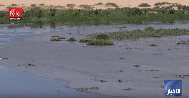 فيديو .. شاطئ واد مرزك بالبيضاء ضمن القائمة السوداء بسبب المياه عادمة