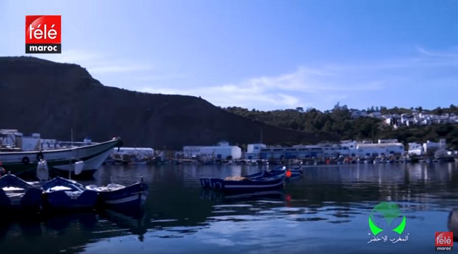 المغرب الأخضر: تعرفوا على الطرق التقليدية لزراعة الطحالب البحرية وكيفية تربية الأسماك في ضيعة نموذجية