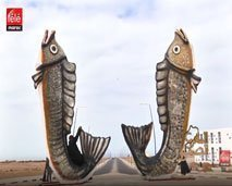 دور الصيد البحري في إنعاش الاقتصاد بطانطان