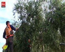 فلاحتناثروتنا : من قلعة السراغنة جولة للتعرف على مراحل إنتاج زيت الزيتون والتقنيات المستخدمة في زراعة الزيتون وجنيه
