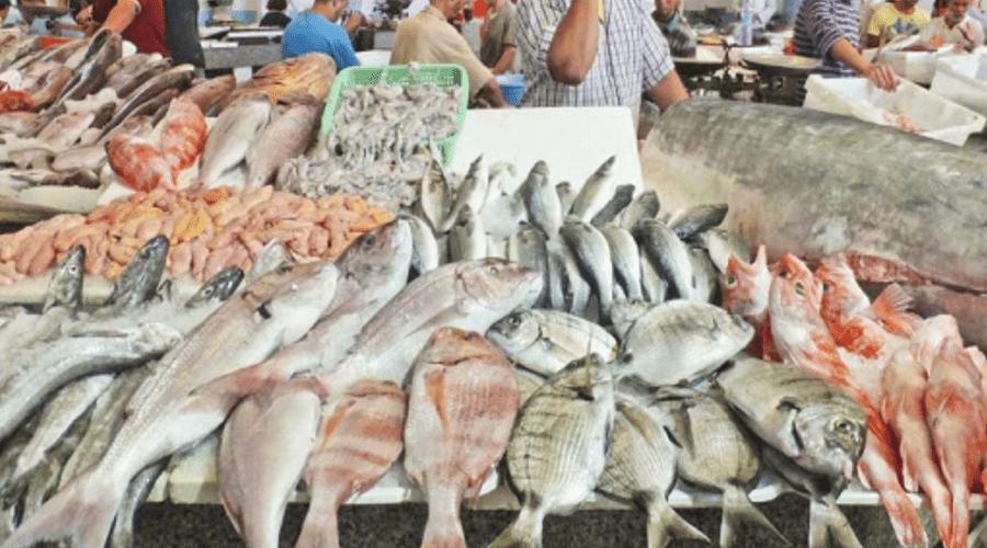 بائع سمك يعيد الحالة الوبائية ببني ملال إلى نقطة البداية