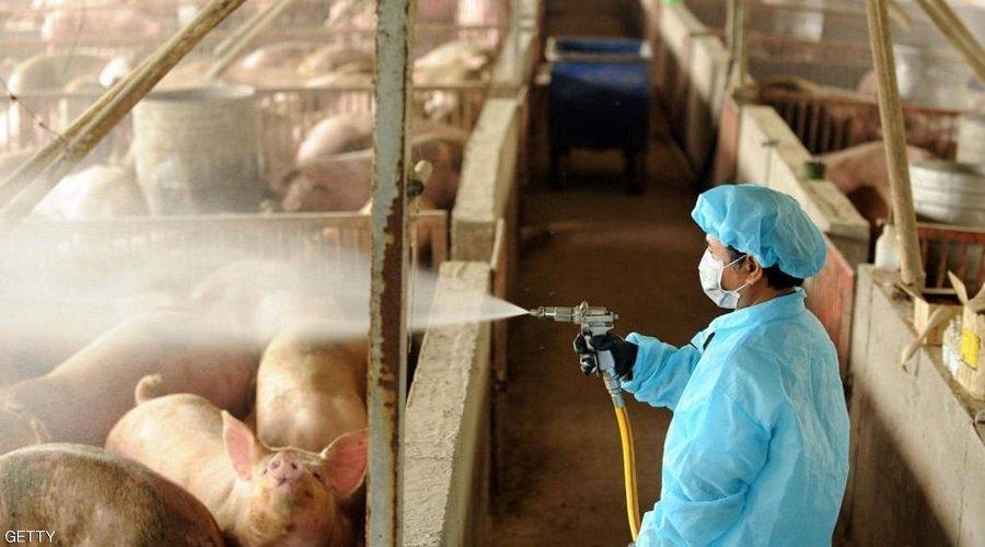 ظهور فيروس جديد بالصين وتخوفات من إعادة سيناريو كورونا