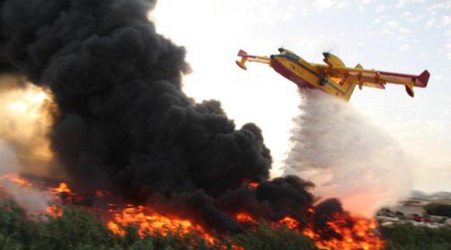السيطرة على حريق أتى على 36 هكتارا من الغابة الدبلوماسية بطنجة