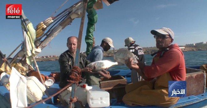 الوكالة الوطنية للموانئ تباشر إعادة هيكلة عدد من موانئ الصحراء المغربية