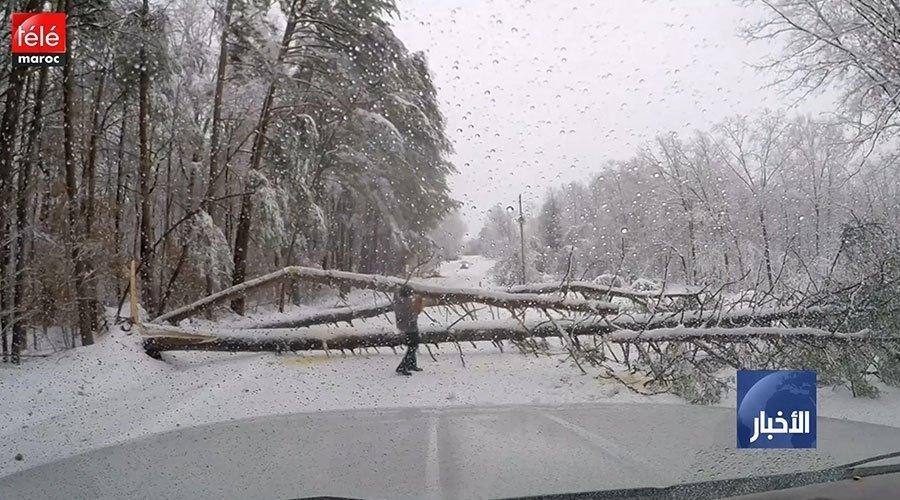 الولايات المتحدة..عاصفة شتوية تقتل شخصا وتحرم 310 آلاف من الكهرباء في جنوب شرق البلاد