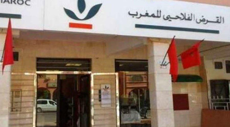 القرض الفلاحي للمغرب يدعم الفيدراليات البيمهنية