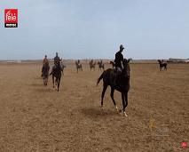 برنامج خيول يزور الملتقى الدولي لسباقات الخيول بالمغرب