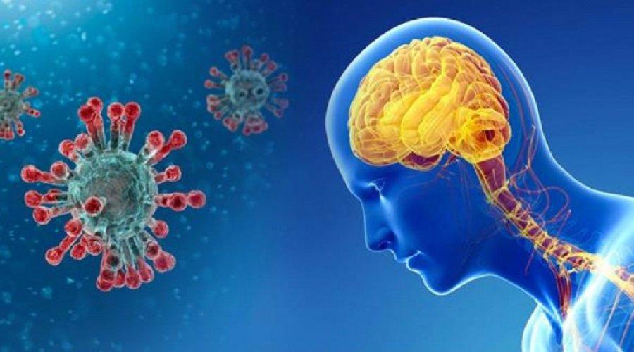 هذه آثار فيروس كورونا على الدماغ