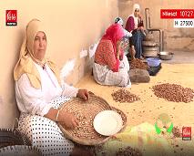 """تعرفوا على إنتاج """"الأركان""""، وتعاونية إنتاج الحليب في الحلقة الجديدة من برنامج """"المغرب الأخضر"""""""