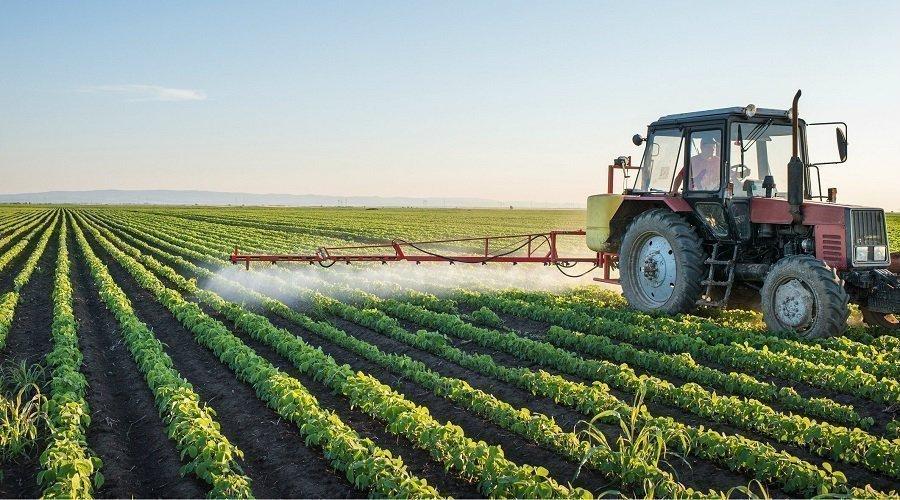 البنك الدولي يدعم استراتيجية الجيل الأخضر بالمغرب بـ 250 مليون دولار