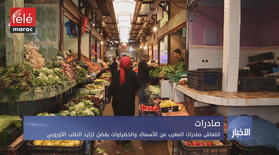 انتعاش صادرات المغرب من الأسماك والخضروات بفضل تزايد الطلب الأوروبي