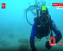 برنامج أكسجين سيغوص بنا لاكتشاف أعماق  بحر بليونش