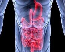 هذا ما يجب معرفته عن دور البروبيوتيك في علاج القولون العصبي