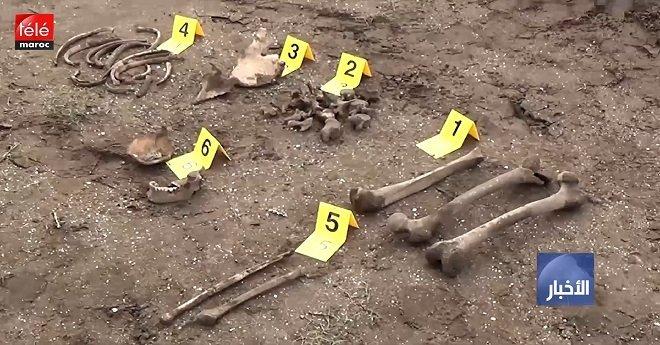 زناتة.. العثور على رفات عظام بشرية في أرض خلاء