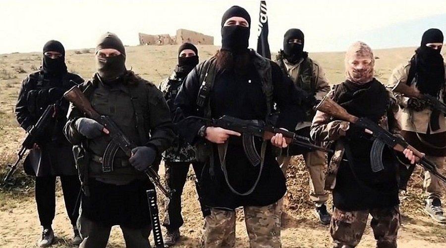 تركيا تؤكد قبول ألمانيا وهولندا تسلم مواطنيهما المنتمين لداعش
