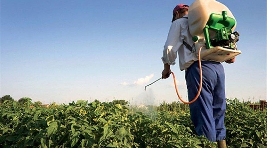 قانون جديد لاستعمال المبيدات الزراعية والسجن في انتظار المخالفين
