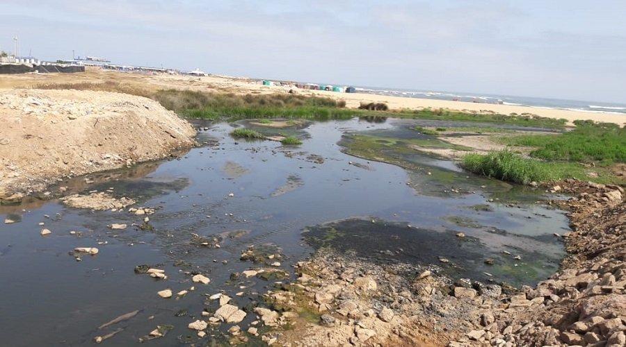 كارثة بيئية تهدد الواجهة البحرية لإقليم النواصر