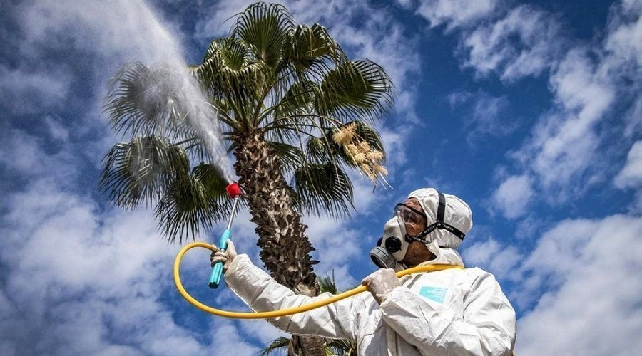 دراسة : حرارة الصيف تحد من انتشار كورونا لكن الفيروس لن يختفي