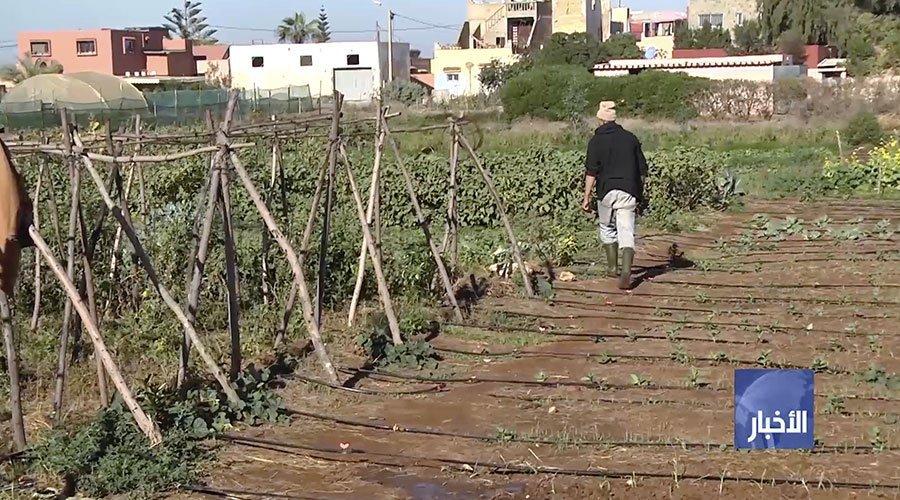 مشروع بـ82 مليون أورو يدعم فلاحين مغاربة ضد تغيرات المناخ