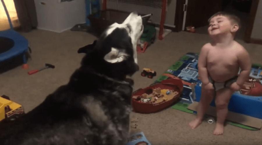 شاهد.. طفل في الثانية من عمره يعوي مع كلبه يشغل الملايين مؤقتا عن كورونا