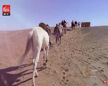 """برنامج """"خيول"""" يحط الرحال هذه الحلقة بالصحراء المغربية ليقربنا من التظاهرة العالمية """"تجوال المغرب"""" التي تعرف مشاركة أكثر من 100 فارس من جميع أنحاء العالم"""