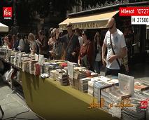كايات من الأندلس: ذكرى حرق العديد من الكتب الإسلامية الأندلسية