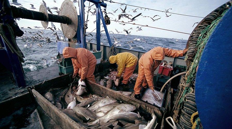 لجنة الميزانيات بالبرلمان الأوروبي تصوت لفائدة تبني اتفاق الصيد البحري مع المغرب