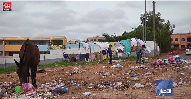 مجلس الحكومة ..اتفاق بشأن حظر استيراد النفايات الخطرة إلى إفريقيا