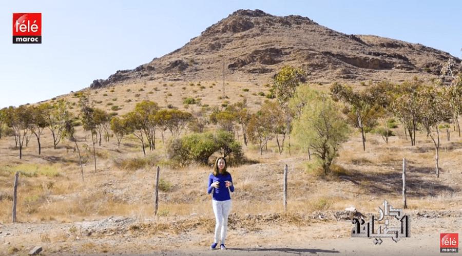 """تيلي ماروك تأخذكم في زيارة خاصة لمدينة سيدي بوعثمان عبر برنامج """" دارالضيافة """""""